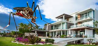 mansion global mansion global why zika isn t hurting luxury real estate even in