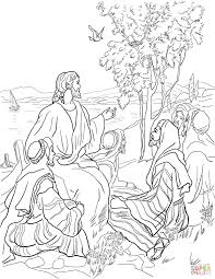 mustard tree parable coloring pages parable of mustard seed