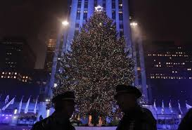 Rockefeller Tree 2017 Rockefeller Center Tree Has Been Chosen Silive