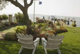 Backyard Trees For Shade - types of canopy trees home guides sf gate