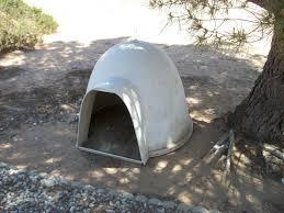 Dog Igloo Igloo Dog House Ideas All New Cars