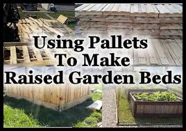 What Type Of Wood For Raised Garden - using pallets to make raised garden beds hometalk