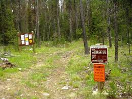 Wyoming forest images Boise national forest wyoming fir creek trail jpg