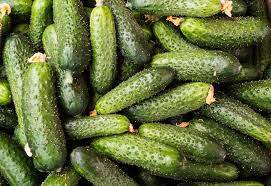 why are cucumbers bitter and what to do about it