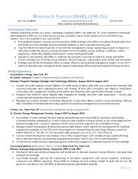 buy resume template resume template it consultant copy best application essays buy essay