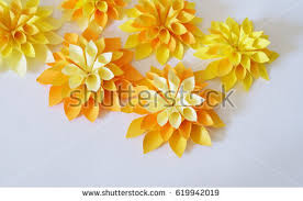 Bulk Flowers Bulk Flowers Stock Images Royalty Free Images U0026 Vectors