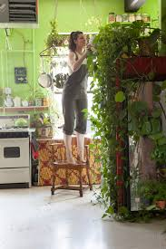 Apartment Plants Woman Turns Her New York Apartment Into An Indoor Jungle Deviant