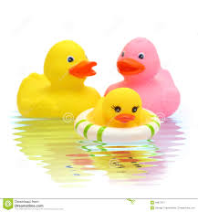 rubber duck family stock photo image 49873712