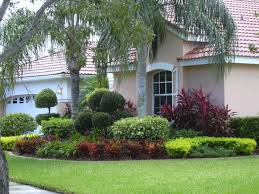 garden ideas landscape ideas for front of house exotic simple