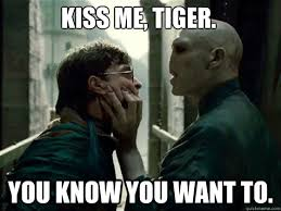 I Know You Want Me Meme - kiss me tiger you know you want to voldemortlol quickmeme
