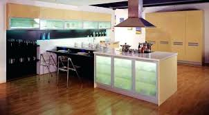 Frosted Glass Inserts For Kitchen Cabinet Doors Glass Knobs On White Kitchen Cabinets Frosted Glass Kitchen