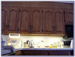 Hardwired Under Cabinet Lighting Kitchen by Hardwired Dimmable Under Cabinet Led Lighting Cabinet Home