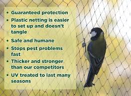 How To Keep Birds Off Your Patio by Amazon Com Heavy Duty Bird Netting Protect Plants And Fruit