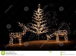 christmas yard christmas yard lights stock photo image 390950