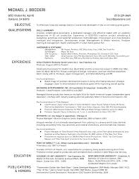Work Experience Resume Format For It by Internal Resume Template