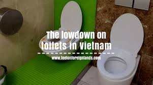 Most Googled Question Ever The Most Googled Questions About Toilets In Vietnam Feet On