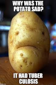 Potatoe Meme - sad pun potato imgflip
