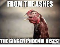 Funny Ginger Memes - meme funny shopping humour just for fun pinterest