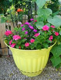 Vegetable Garden In Pots by Creative Container Gardening Tips Ramblings From A Desert Garden