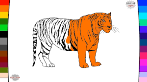 tiger coloring page name and sound learning animal for kids