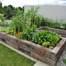 balcony vegetable garden diy ideas with the balcony garden box