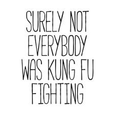 Meme Fu - surely not everybody was kung fu fighting t shirts teepublic
