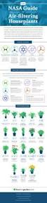 nasa these 18 houseplants help purify your home u0027s air imgur