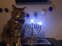 cat menorah not a menorah