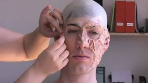 cougar makeup for halloween freddy krueger u0027s burn makeup nightmare on elm street