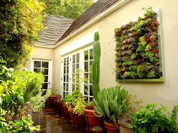 Planter S House by Best Wall Planters Ideas Best Home Decor Inspirations