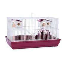 halloween cage decorations hamster diy youtube hamster cages