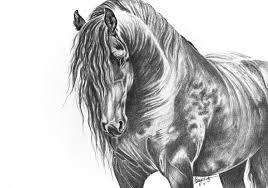 art print graphite pencil drawing horse beautiful black horse
