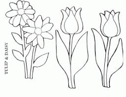 uncategorized tulip coloring pages print printable tulip 287571