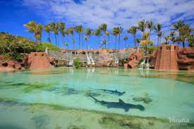 Atlantis Bahamas by Nassau Airport To Atlantis Resort Image Gallery Hcpr