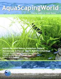 aquascaping world magazine november december 2010 by john n issuu