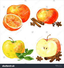 vector set different fruits spices four stock vector 281981714