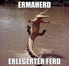 Alligator Memes - alligator food memes quickmeme