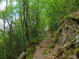 Bad Bertrich Langes Wochenende In Bad Bertrich Wandernbonn De