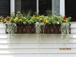 wrought iron planters archives window box contest