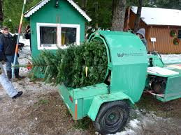 u cut trees at christmas creek north bend wa an emerald city life