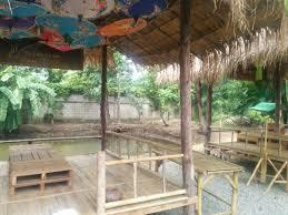 meilleurs cours de cuisine meilleur cours de cuisine de chiang maï picture of the