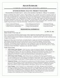 Analyst Resume Sample Medical Claim Processor Sample Resume Computer Does Not Resume