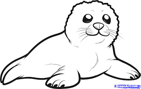 leopard seal coloring page getcoloringpages com