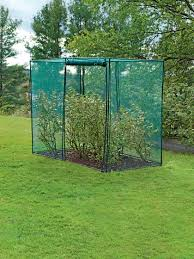 crop cage 4 u0027 x 8 u0027 x 6 u0027 tall blueberry bush covers crop
