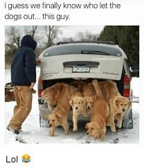 Who Let The Dogs Out Meme - i guess we finally know who let the dogs out this guy actually