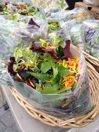 Salad With Edible Flowers - 149 best edible flowers pretty yummy images on pinterest