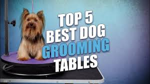 go pet club grooming table electric motor top 5 best dog grooming tables youtube