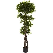 nearly natural 5 ft ruscus tree 5400 the home depot