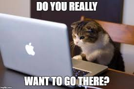 What Font Do Memes Use - cat using computer memes imgflip