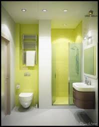 Green And White Bathroom Ideas Green And Brown Bathroom Bathrooms Pinterest Brown Bathroom